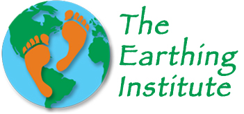 The Earthing Institute