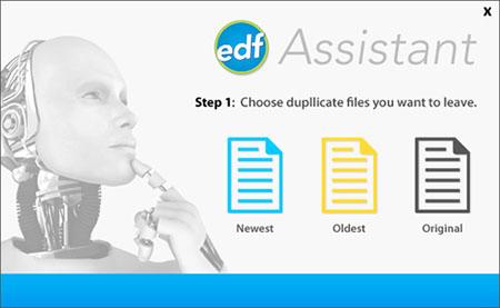 EDF Assistant