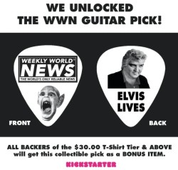 guitar picks.jpg