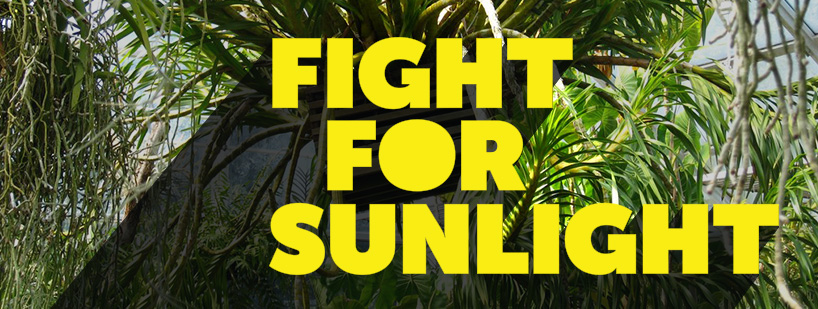 "Banner with the words ""Fight for Sunlight."""
