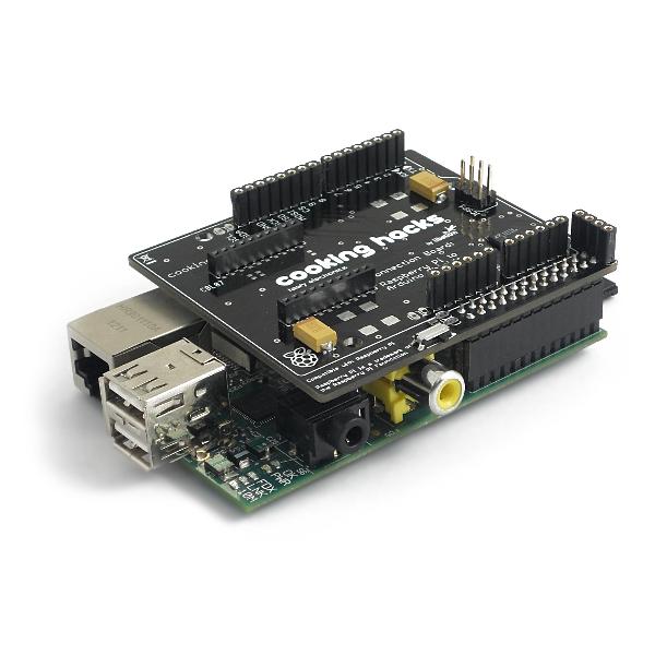 Raspberry Pi to Arduino Bridge