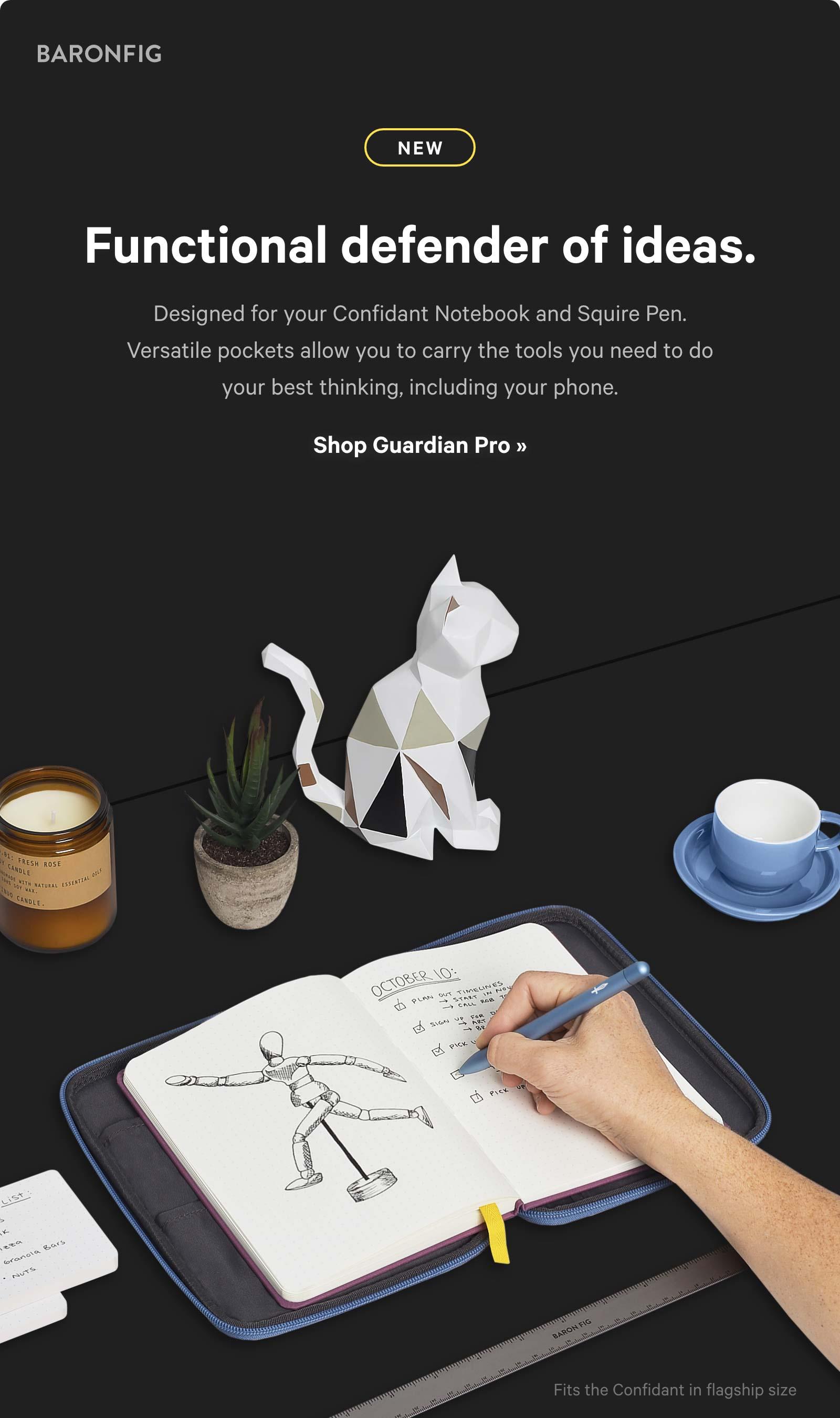Functional defender of ideas. Shop Guardian Pro ?