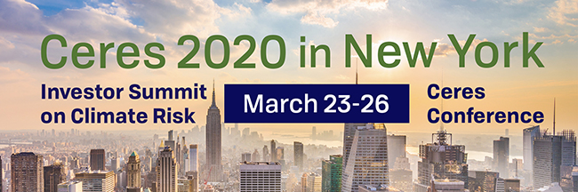 Ceres 2020 in New York header image
