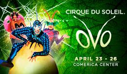 Cirque Deal