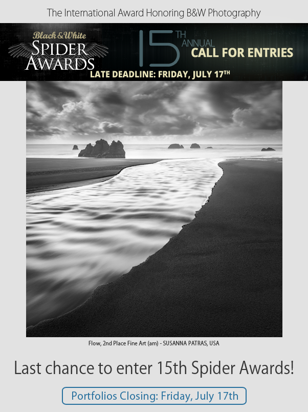 Last chance to enter 15th Spider Awards - Portfolios Closing July 17th