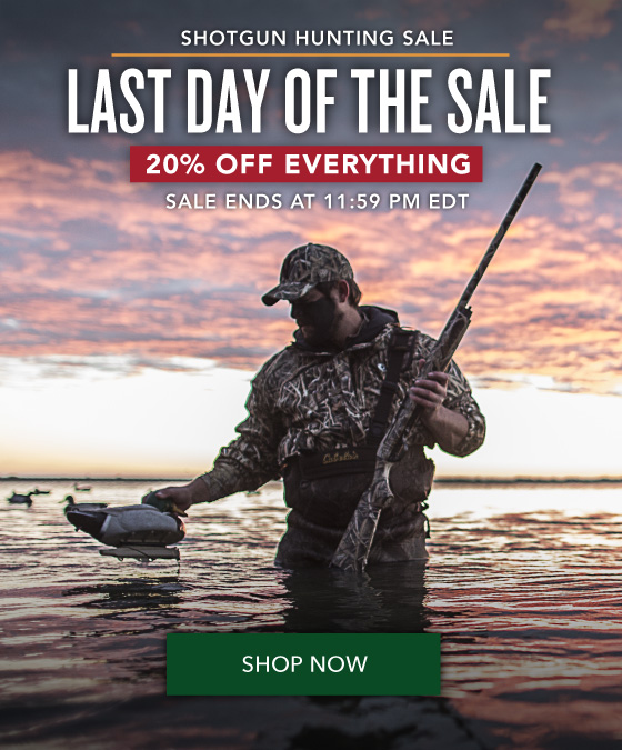 Last Day of the Sale - 20% OFF Everything