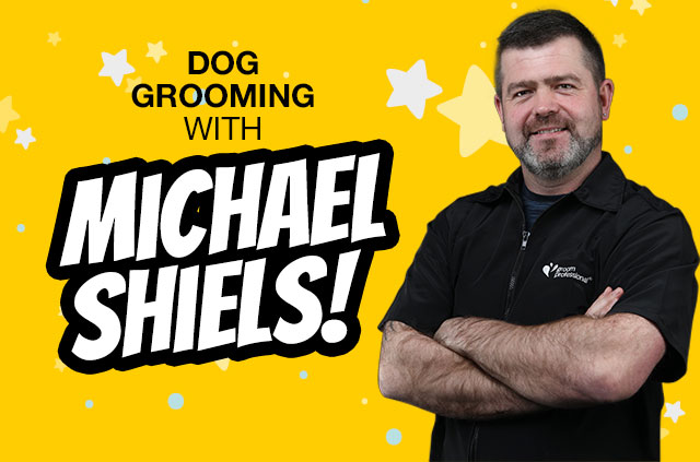 Dog Grooming with Michael Shiels