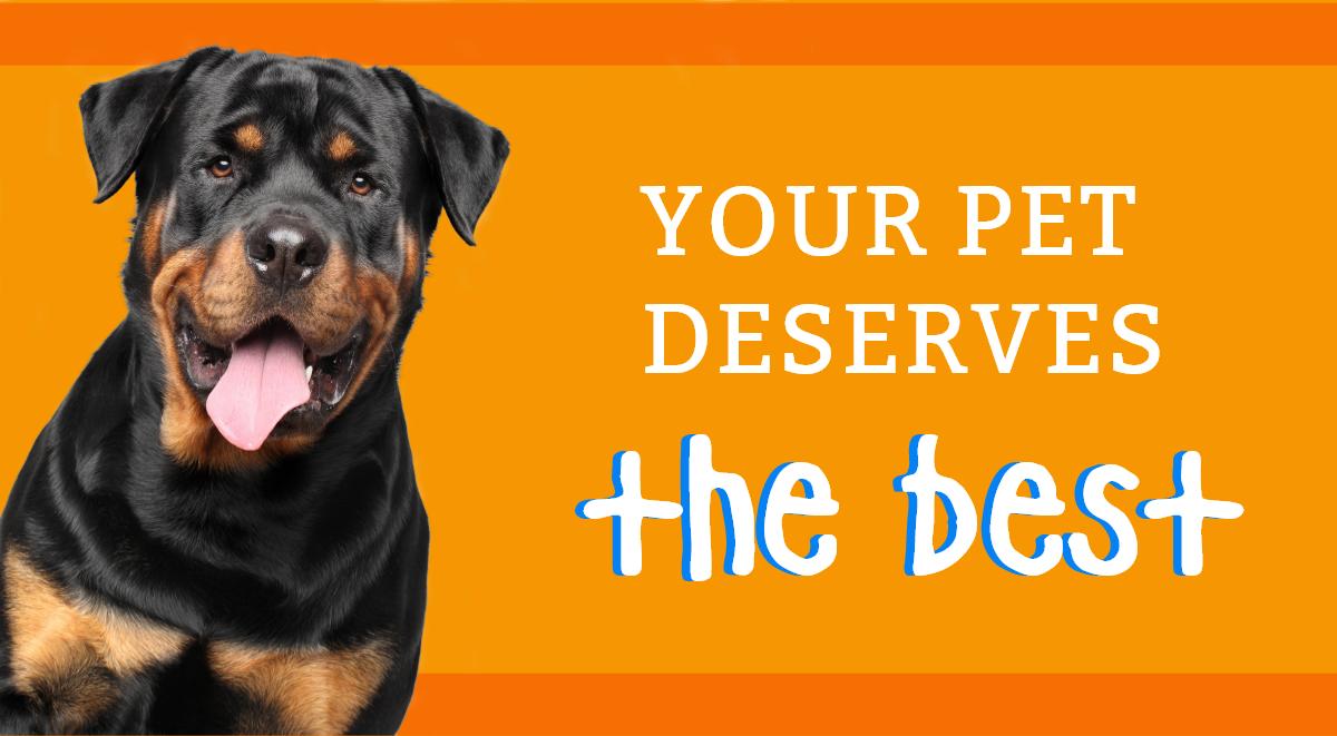 Your pet deserves the best