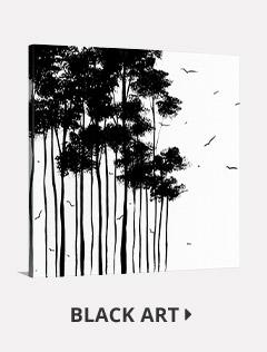 Shop Black and White Art