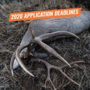 2020 App Deadlines