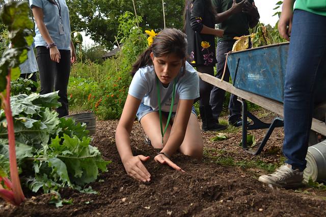 Girl touching dirt in a garden