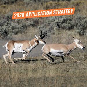 Arizona antelope app strategy