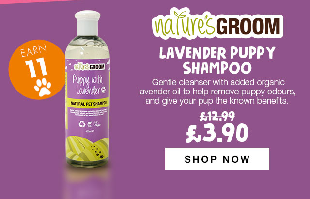 Shop Natures Groom Lavender Puppy Shampoo