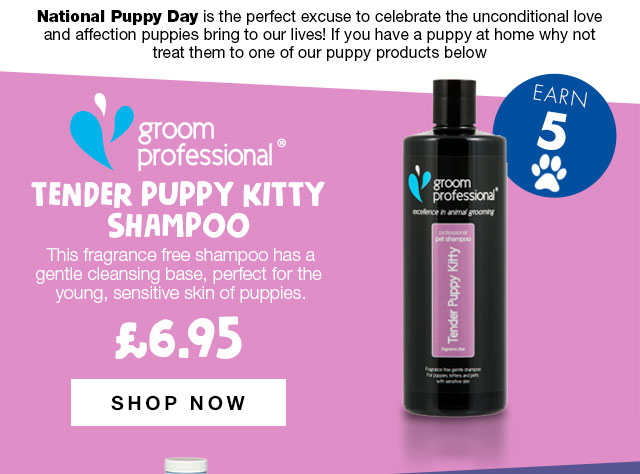 Shop Groom Professional Tender Puppy Kitty Shampoo