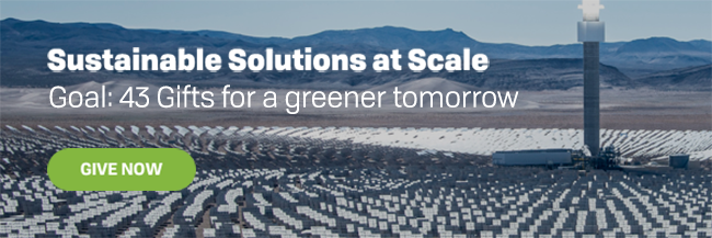 Sustainable Solutions at Scale