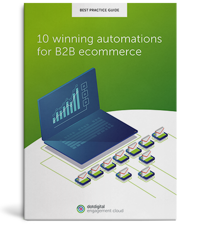 Download the 10 winning automations for B2B ecommerce guide