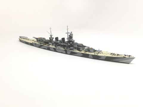 NE 1500TS Roma with painted decks (camouflage)