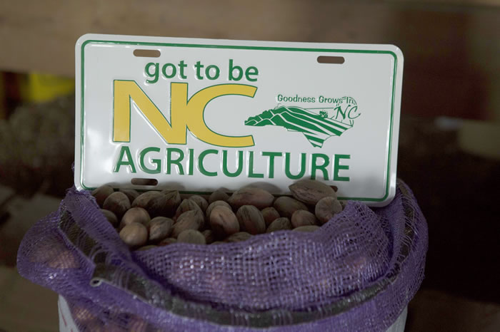 Pecans and Got to Be NC sign