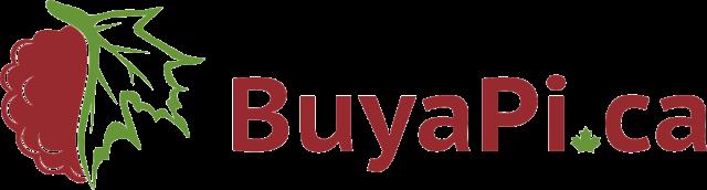 buyapi-ca-640x172.png
