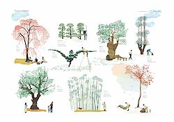 Trees in Japan Poster