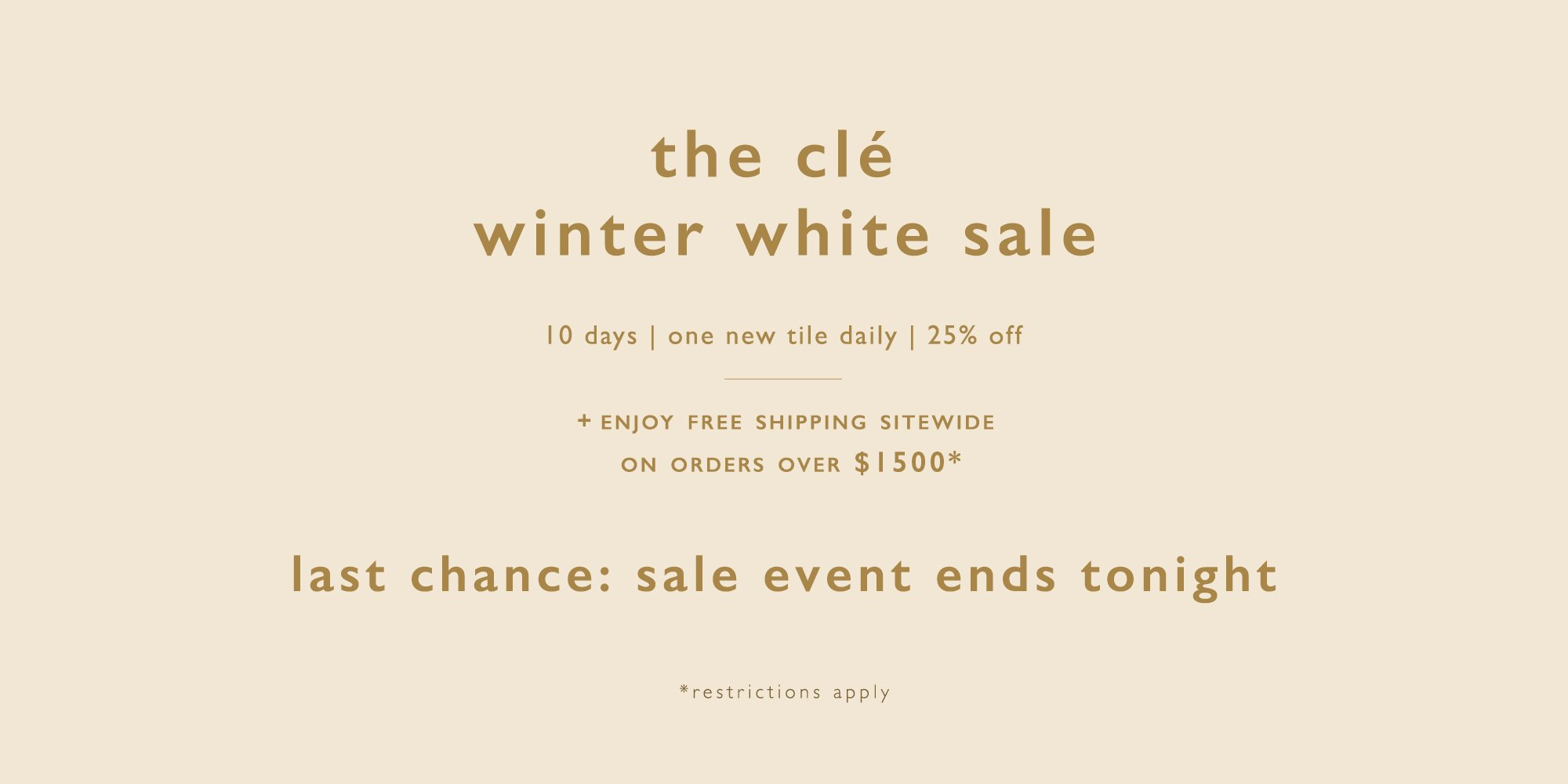 Winter_white_sale_banner_2019_last_day