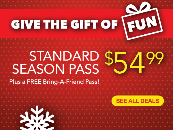 Give the Gift of Fun