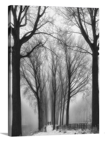 Then Winter Comes by Yvette Depaepe