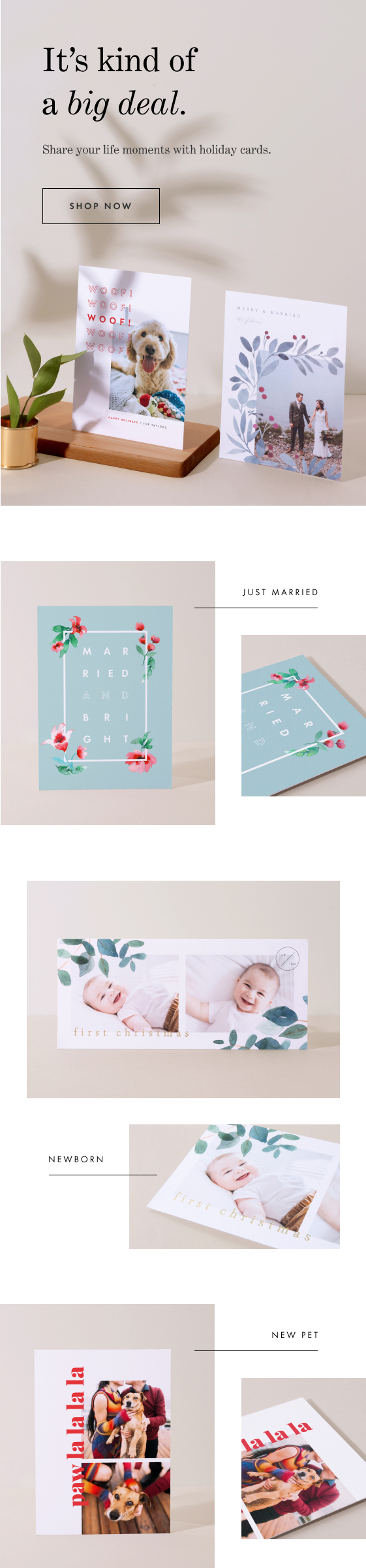 Holiday Cards for all Milestones