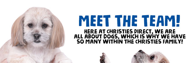 Meet the team at Christies!