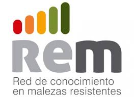 REM research: Glyphosate resistance no longer the only threat in Argentina
