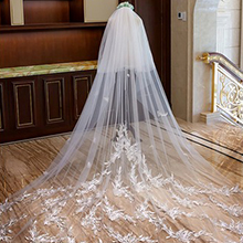 Two-tier Lace Applique Edge Cathedral Bridal Veils With Lace (006163758)