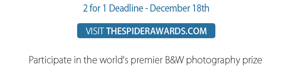 16th Call for Entries Open - visit THESPIDERAWARDS.COM