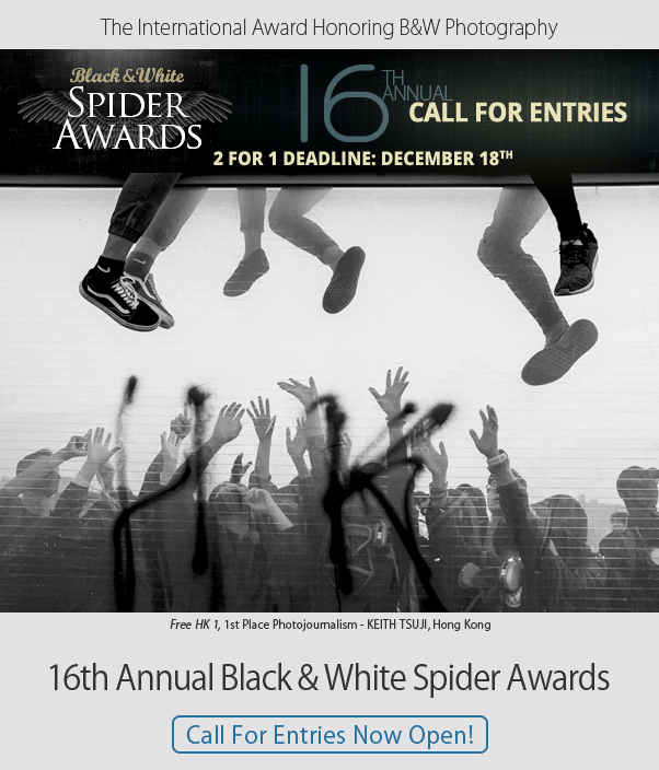 16th Spider Awards - Call for Entries Open