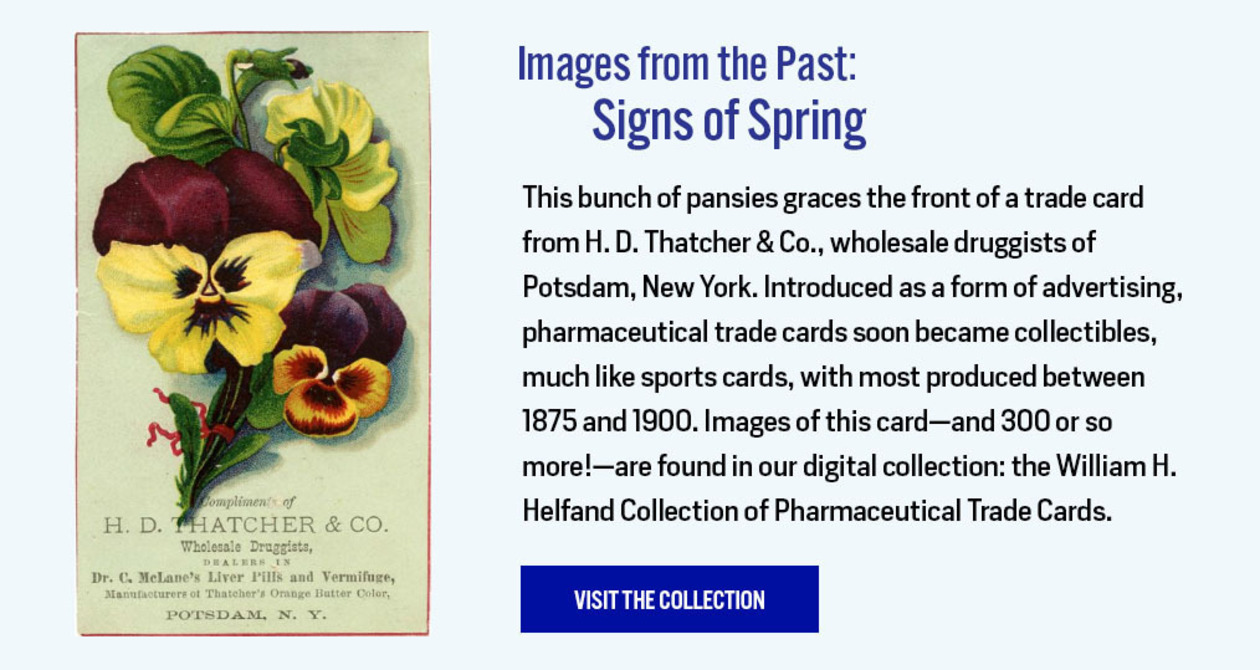 Images from the Past: Signs of Spring - https://digitalcollections.nyam.org/islandora/object/digital%3Ahelfand