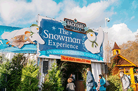 Snowman Experience Image