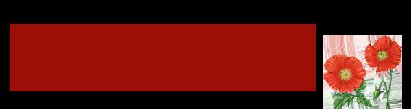 Bandeau Kokopelli Meconopsis