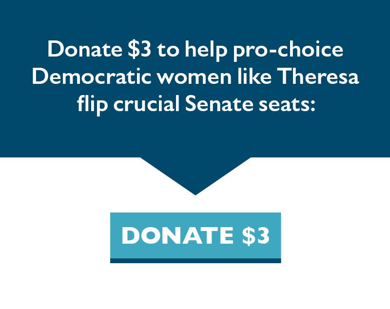 Donate $3 to help pro-choice Democratic women like Theresa flip crucial Senate seats.