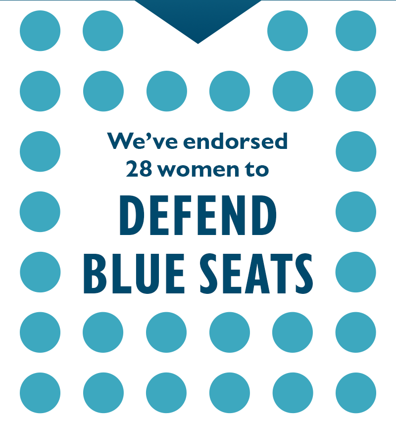 We've endorsed 28 women to DEFEND BLUE SEATS