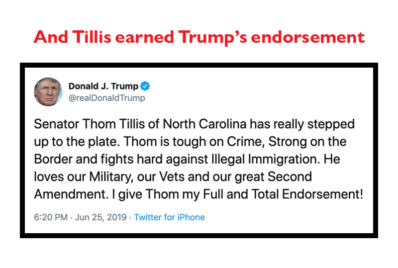 And Tillis earned Trump's endorsement: