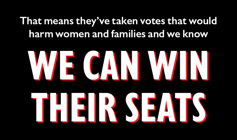 That means they've taken votes that would harm women and families and we know WE CAN WIN THEIR SEATS.