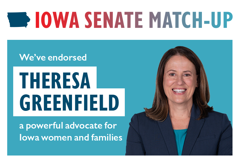 IOWA SENATE MATCH-UP