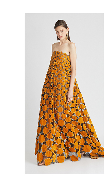 Laser-Cut Velvet and Tulle Gown