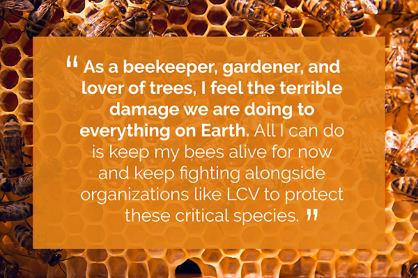 As a beekeeper, gardener and lover of trees, I feel the terrible damange we are doing to everthing on Earth