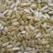 Ukraina. Tluszcze, oleje roslinne od 2, 2 zl/L. Produkujemy olej slonecznikowy 1-3-5L PET pod marka