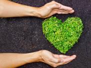 Walentynkowe eko-prezenty