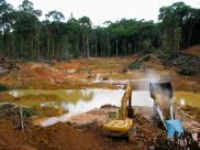 Cz??? Amazonii emituje wi?cej CO2 ni? poch?ania