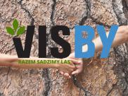 Kupujesz meble Visby – sadzisz drzewa!
