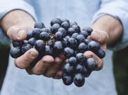 FoodCleaner - sposób na mycie i dezynfekcj? ?ywno?ci