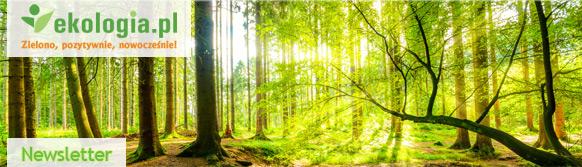 Ekologia.pl - Newsletter