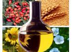 Ukraina. Olej 4 zl/litr z orzechow lesnych, wloskich, ziemnych. Produkcja masla orzechowego. Bakalie